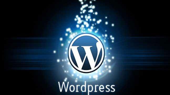 Langkah Tepat Setelah Install WordPress di Cpanel