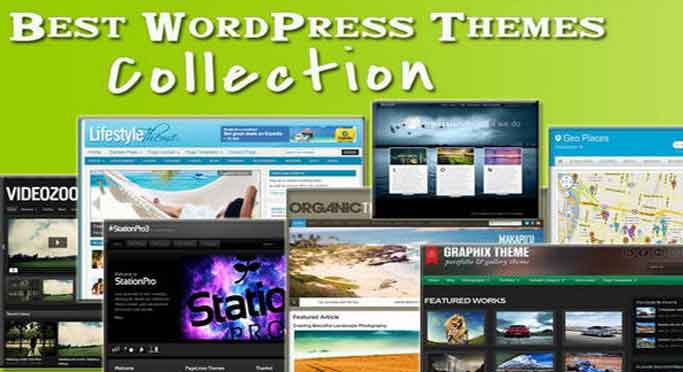 Rekomendasi Theme WordPress Gratis di WordPress.org