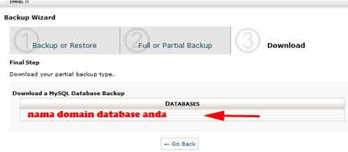 nama-domain-database